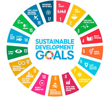 sustainable_development_goals_tcm14-1472