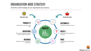 Organisation-wide strategy