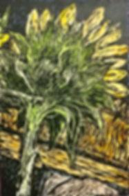 Follow-the-SunSM.jpg