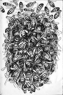 Bee Group 1.jpg
