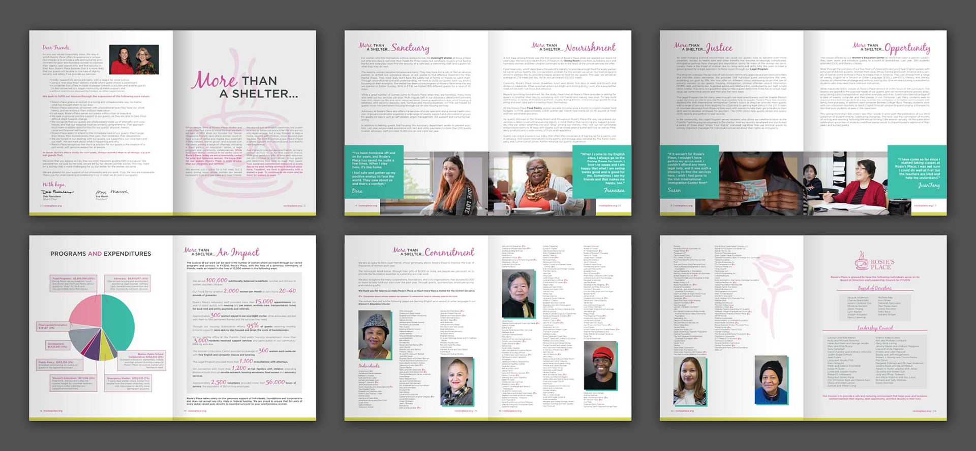ANNUAL APPEAL, PRINT DESIGN, INFOGRAPHIC