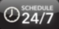 Schedule Inspection Online