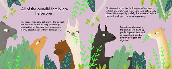herbivores.jpg