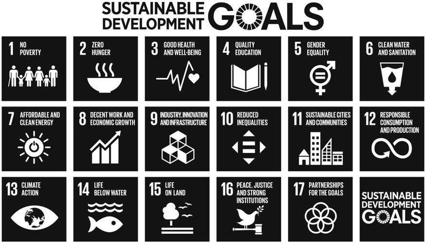 SDG  b-w.png