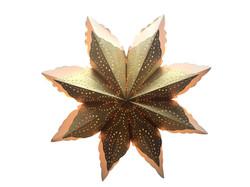 STAR SNOWFLAKE - L21