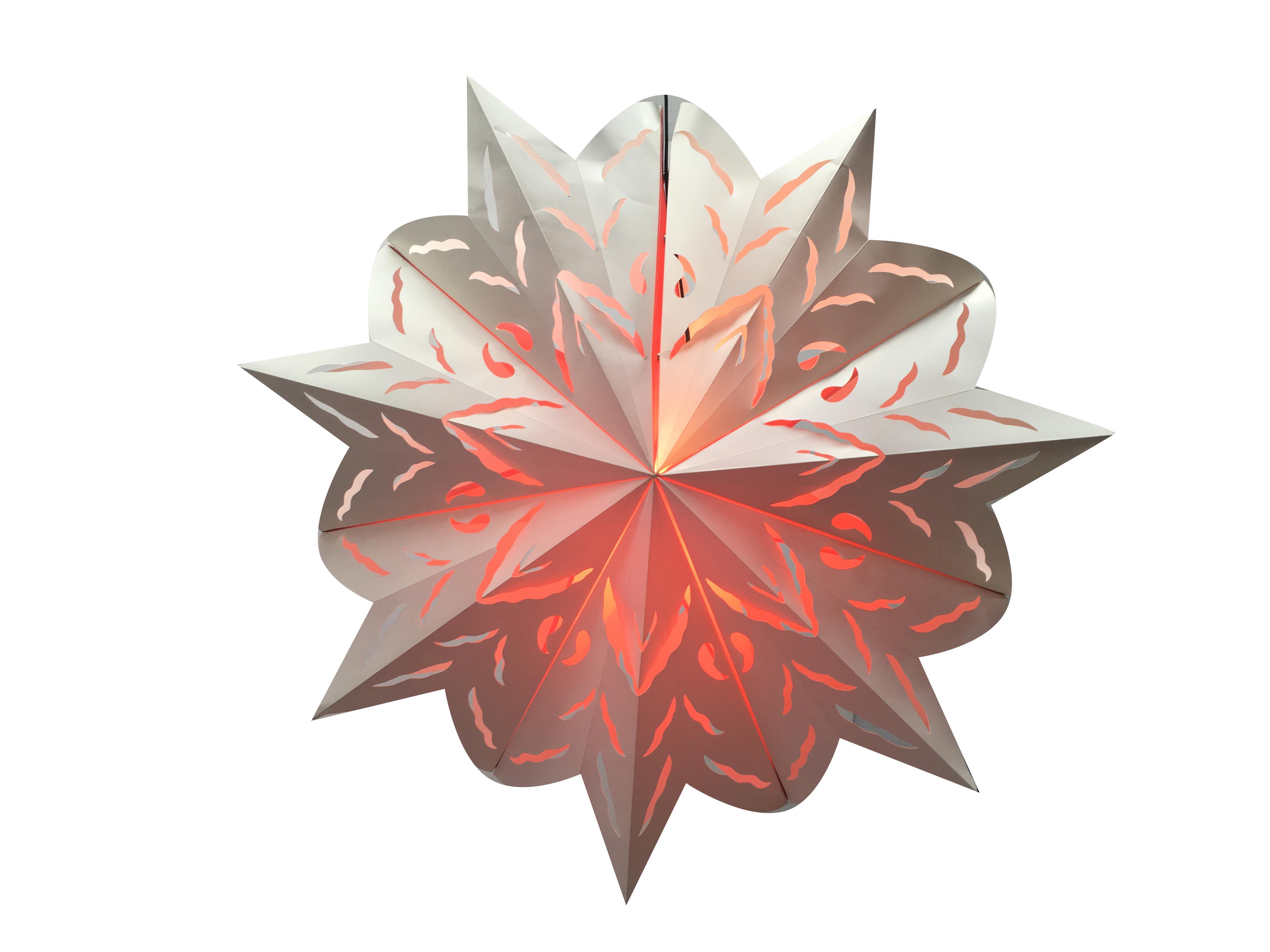 STAR SNOWFLAKE - L20