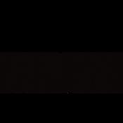 TBU Logo.png