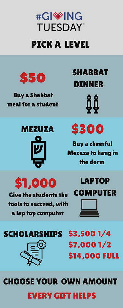 Info graphic Final Giving Tuesday  (3).p