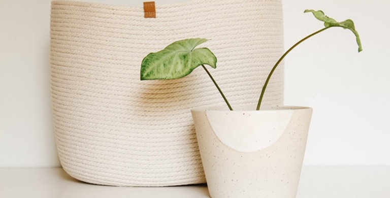 Ceramic Speckle Planter