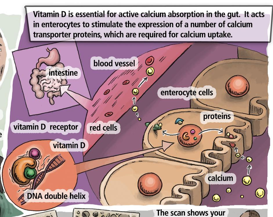 Biochem Ch 5 case 4 text2_edited.jpg