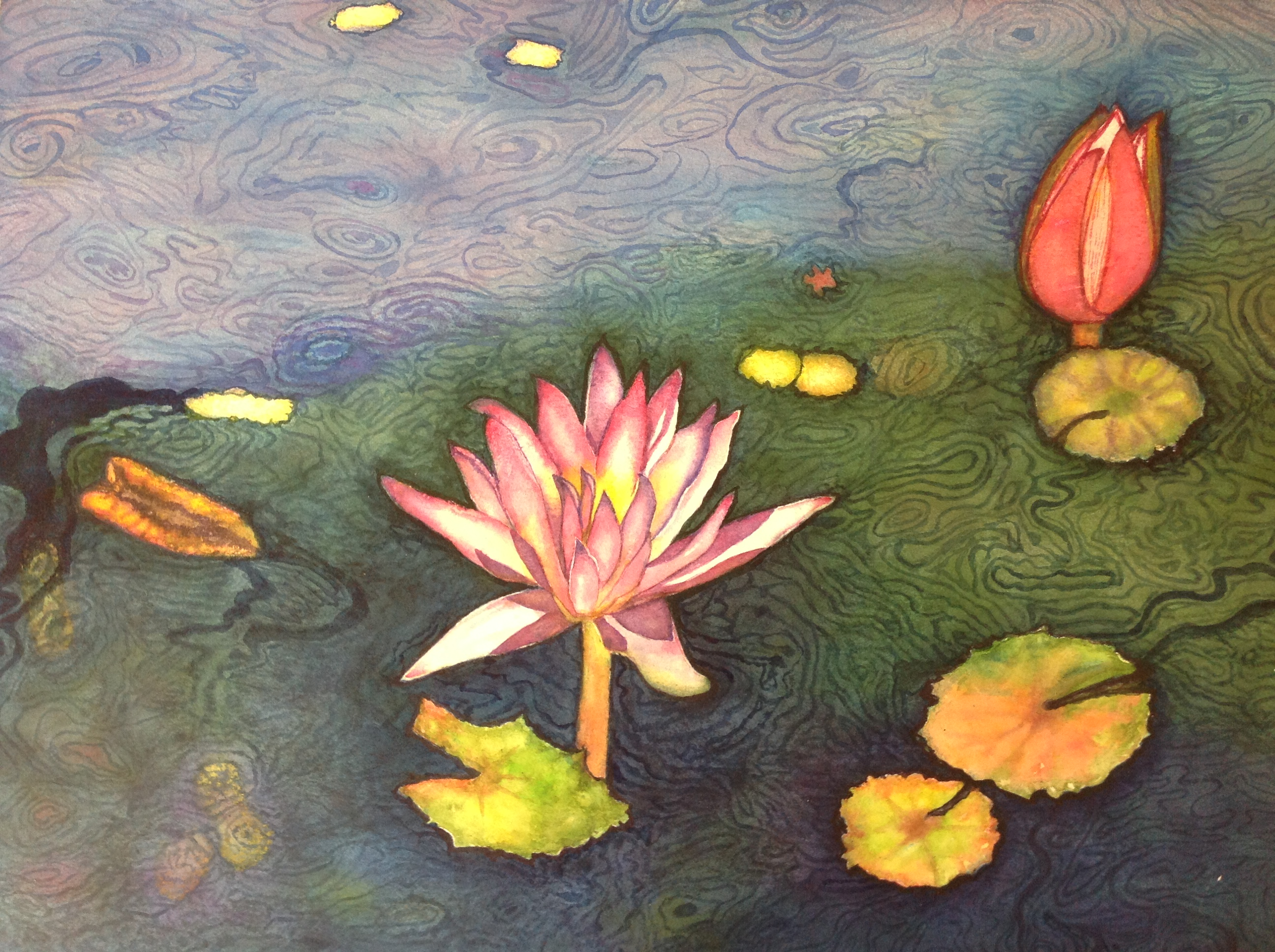 water lily pondIII.22x30in. watercolor on arches   300lbs.JPG