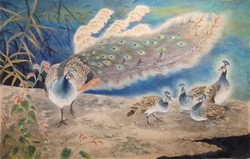 Peacock_family_41×25_Watercolor_on_Hanj