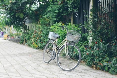Bicycle in Lang Bao Chi village, District 2, Saigon