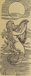 moonlight harp