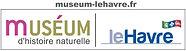 10-Logo_Museum_Le-Havre.jpg