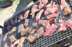 Jul. BBQ at 昭和記念公園