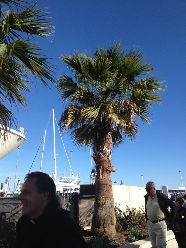 Silencio Club Cannes