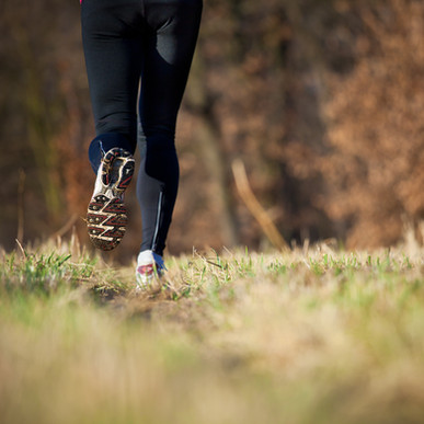 Jogging outdoors in a meadow (shallow do