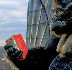 Donky Kong 2.jpg