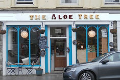 The Aloe Tree.jpeg