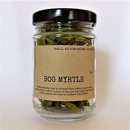 BOG MYRTLE.jpg