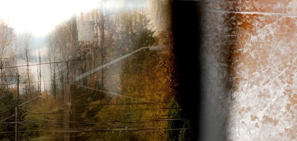 FRASER VALLEY-LANDSCAPE.jpg