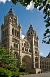 Behind closed doors: Mines, Wax and Sir Richard Owen
