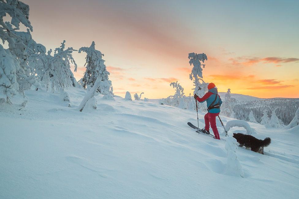 OAC_WAP127_C_Arcticfilming.jpg