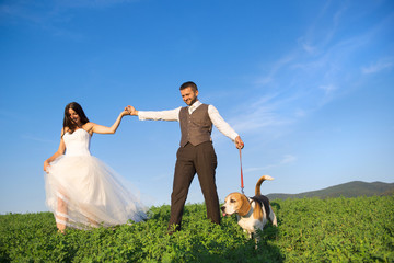 Planning Your Dog Friendly Wanaka Wedding