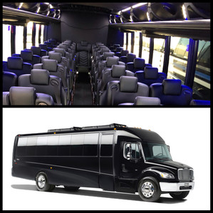 39 passenger mini coach bus, mini coach bus, grech mini bus, grech mini coach, mini bus for rent, rent mini bus