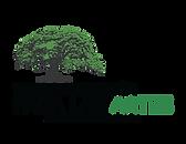 flamboyan arts fund logo - espanol.png