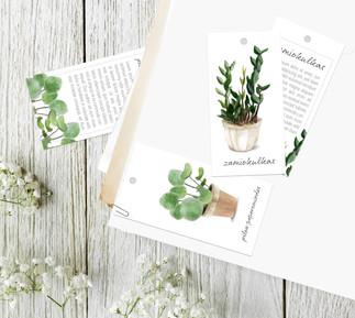 Projekt etykiet dla roślin