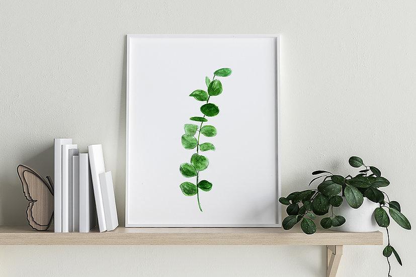 """Plakat botaniczny """"Roślina"""""""