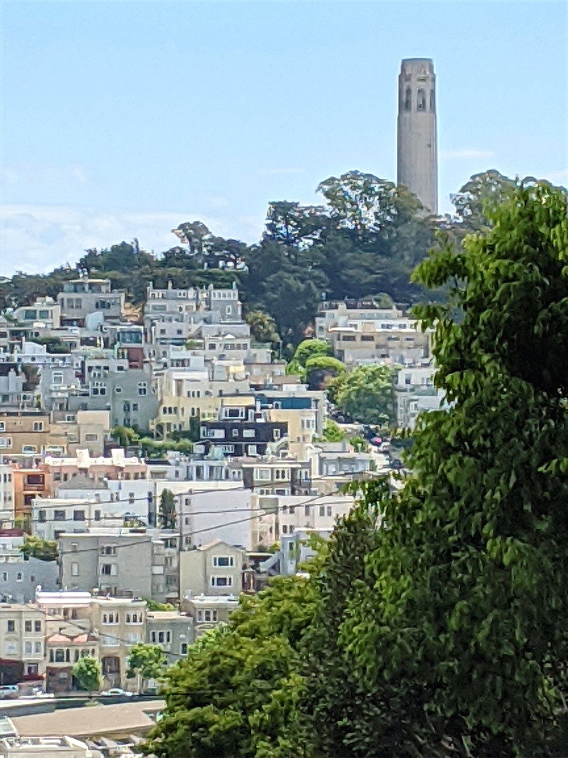 From Telegraph Hill