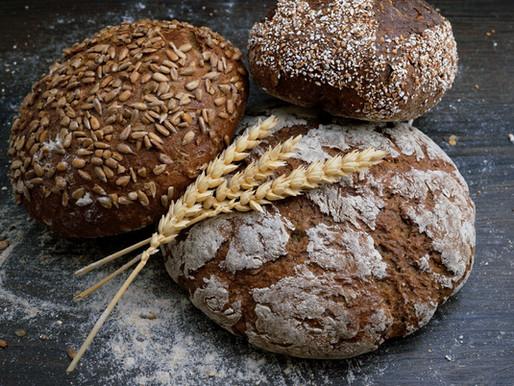 Bread: A Love Story by Noah Suarez-Sikes