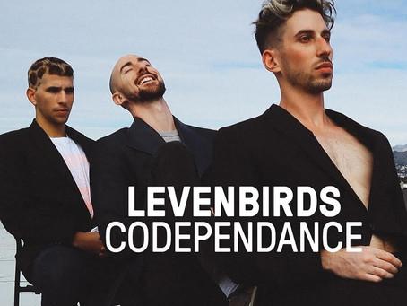 Secret Show: Listening to the Dark Disco Band The Levenbirds