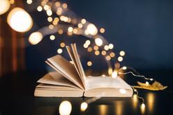 kaboompics_Book, fairy lights
