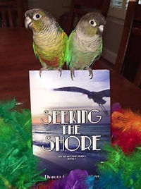 """Book 2 of The Heart Tide Series: """"Seeking the Shore,"""" by Donna Morton Gentry. Book 1 is """"Watching the Water."""""""