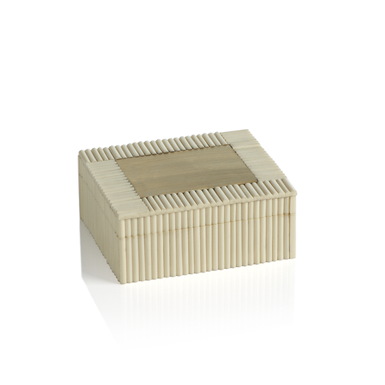WHITE BONE AND BRASS BOX