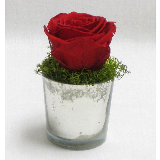 MINI PRESERVED RED ROSE IN MERCURY GLASS VOTIVE