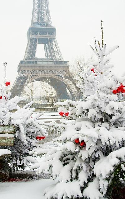 Rare snowy day in Paris The Eiffel Tower