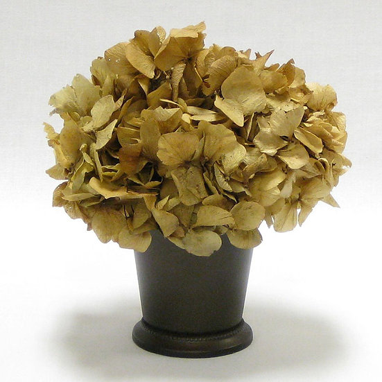 PRESERVED IVORY HYDRANGEA IN JULEP CUP