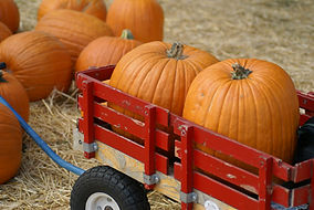 pumpkins-in-a-wagon1.jpg