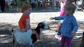 Cute kid with goat.jpg