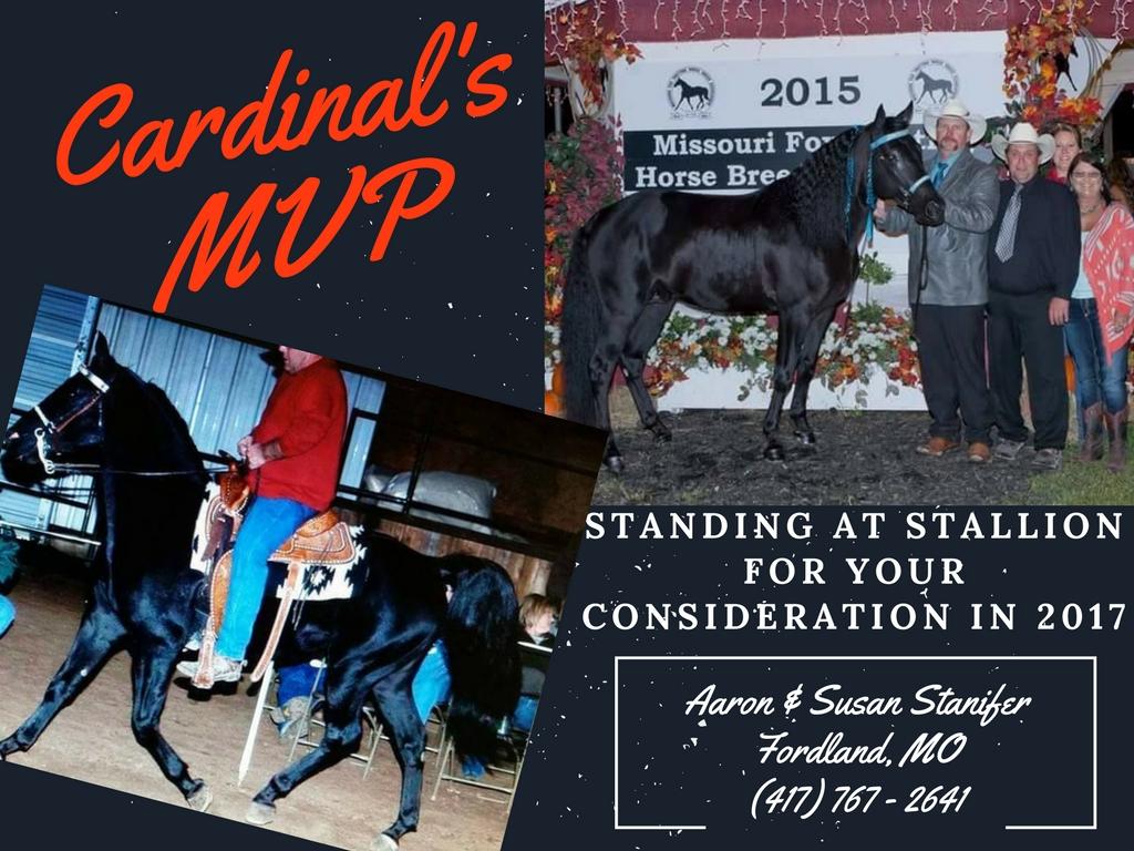 Cardinal's MVP final
