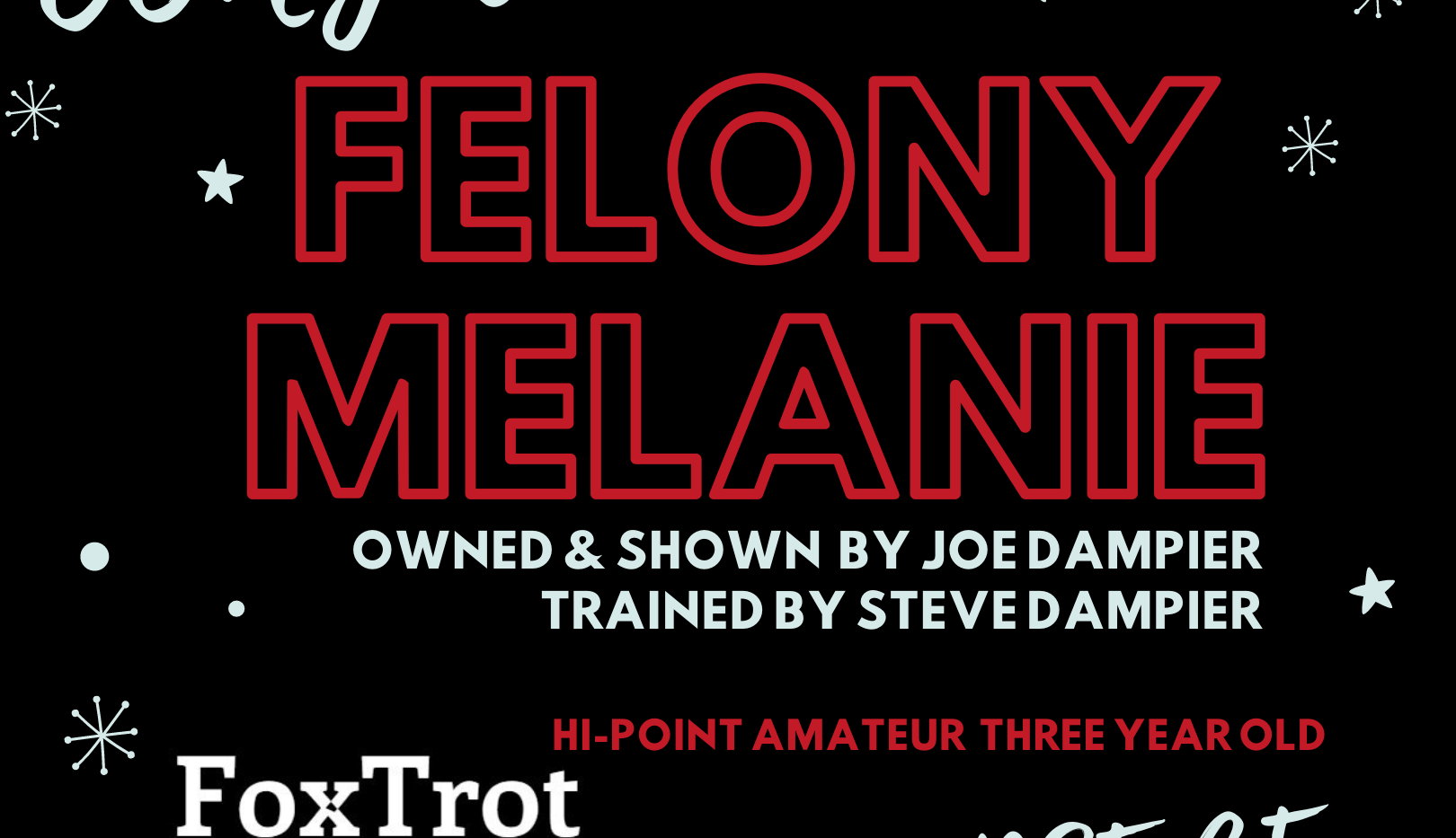 Felony Mealanie Horse of the Year.png
