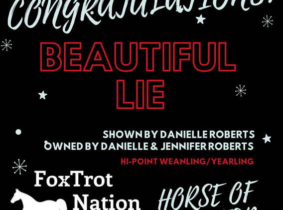 Beautiful Lie Horse of the Year.png