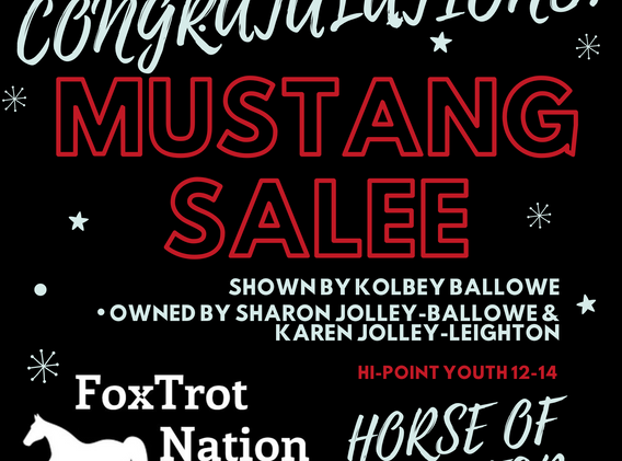 Mustang Sallee Horse of the Year.png