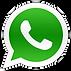 WhatsAppMedicapelli.png
