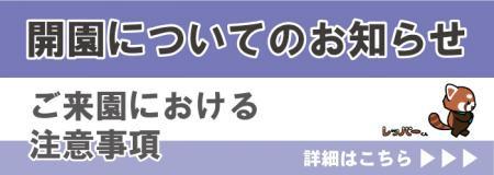 【お知らせ】日本平動物園開園についてのお知らせ
